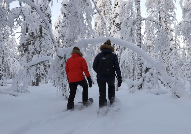 Guided snowshoeing safari in Ranua with Arctic Guesthouse & Igloos.