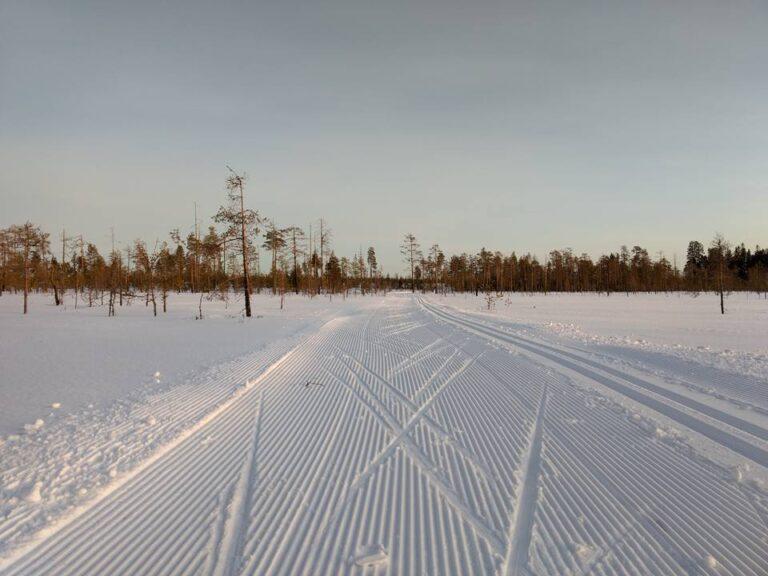 Cross country skiing tracks in Ranua
