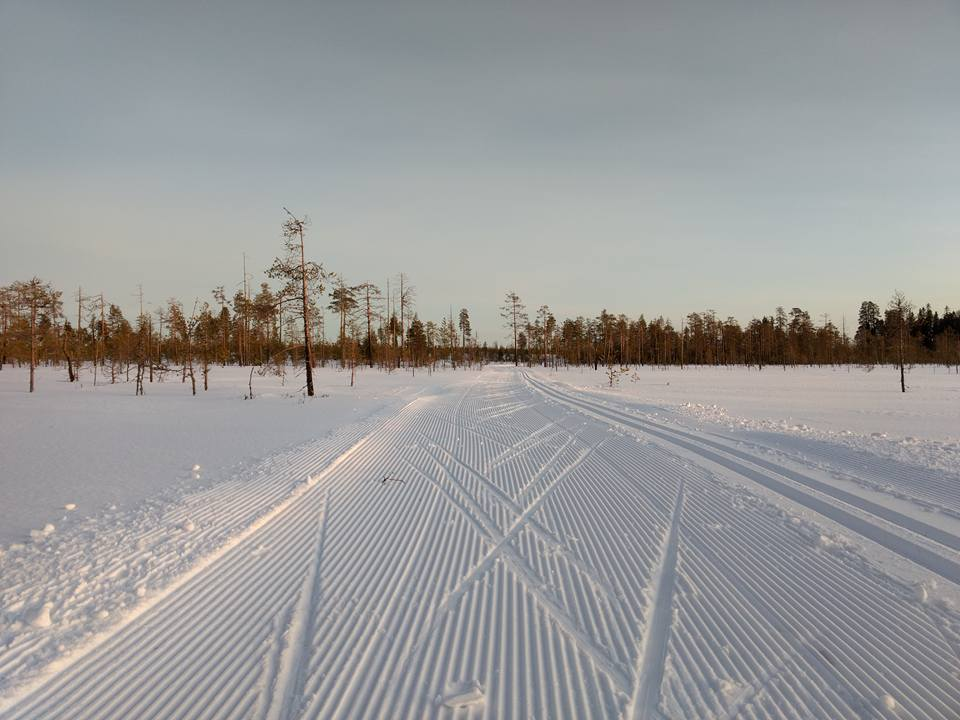 Cross country skiing tracks in Ranua
