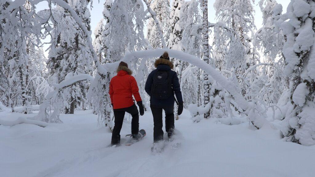 Lumikenkäilyä Ranualla