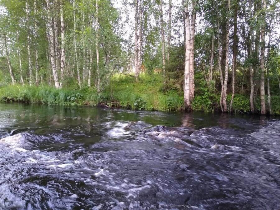 Ranuanjoki Jokikangas kesällä 2020