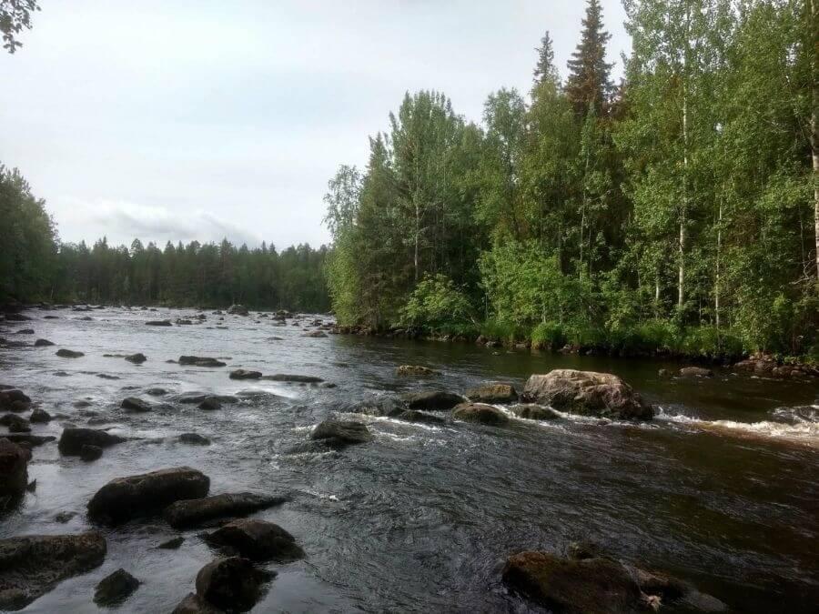 Simojoen Toivakkakoski kesällä 2018