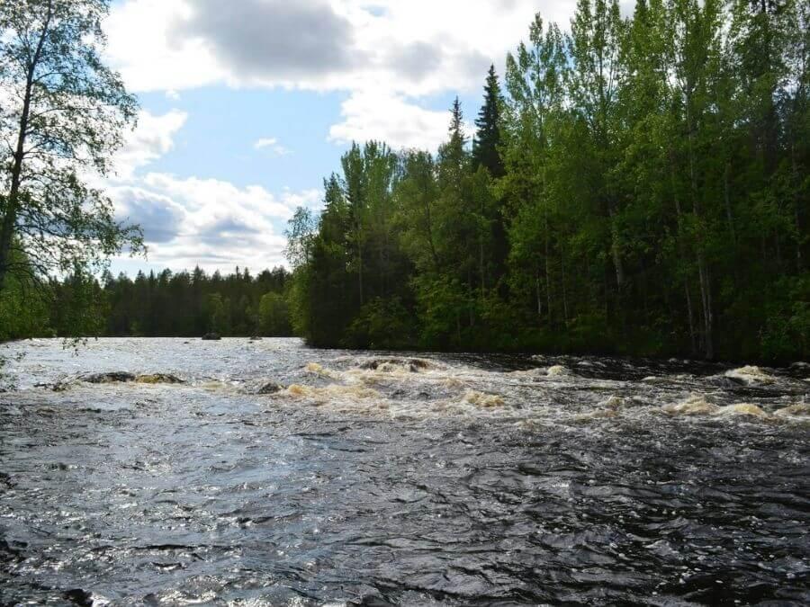 Simojoen Toljankoski kesällä 2015