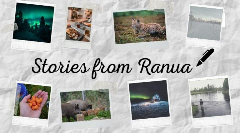 Stories from Ranua blog banner