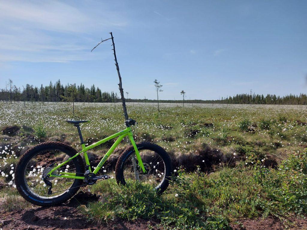 Läskipyöräilyä Ranuan suomaisemissa