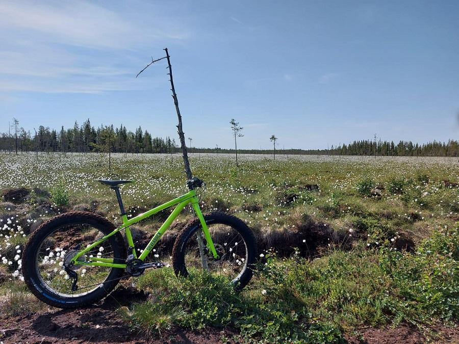 Guided fatbike driving trip in Ranua, Finnish Lapland