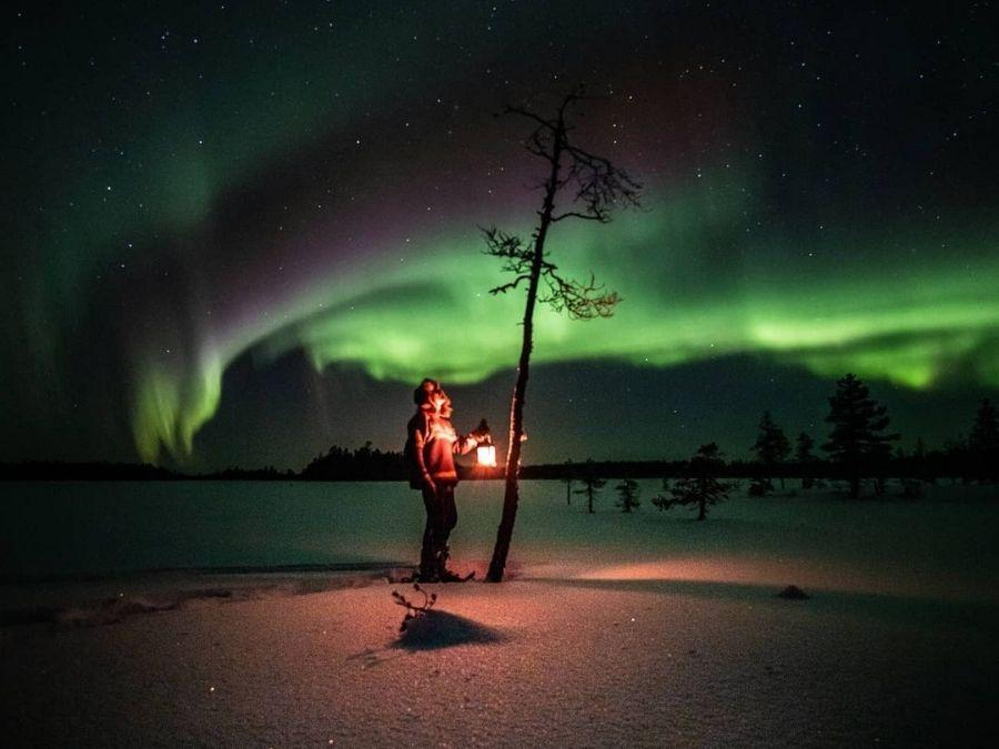 Aurora borealis in winter in Ranua, Finnish Lapland