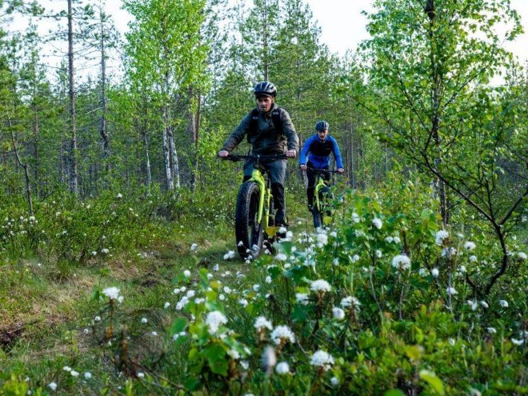 Maastopyöräilyä Fatbikella, eli läskipyörällä Ranuanjärven luontopolulla